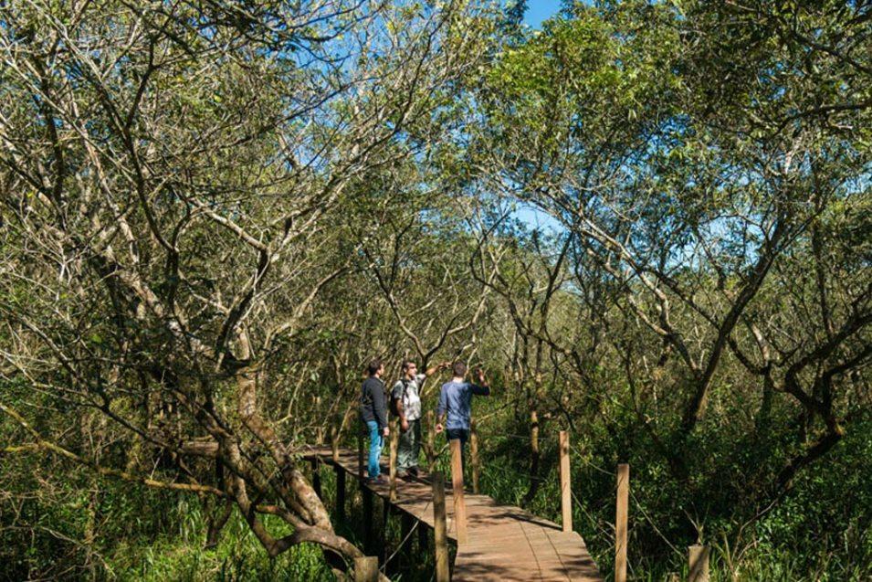 cataratas do iguaçu trilha do poço preto