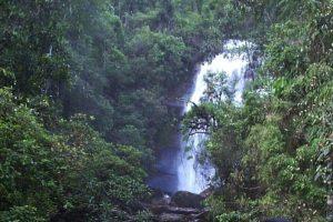 cachoeiras de ouro preto cachoeira dos prazeres